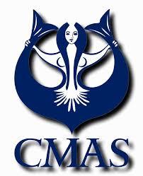 CMAS3d